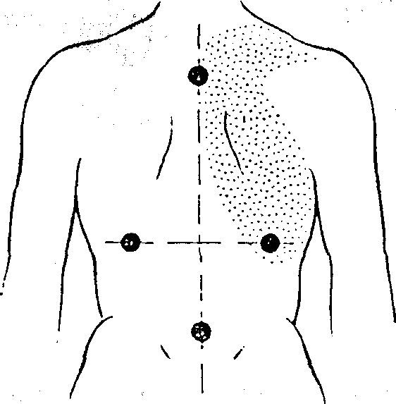 Сексуальные точки мужского тела вас
